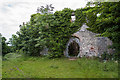 O0474 : Glenmore House ruin, Oldbridge, Co. Meath (2) by Mike Searle