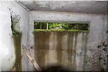 N9171 : Defending neutral Ireland in WWII: Boyne defences - Broadboyne Bridge pillbox (2) by Mike Searle