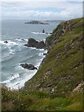 SX6643 : Cliffs above Butter Cove by David Smith