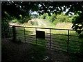 SZ0596 : Bear Cross: two gates on footpath E07 by Chris Downer