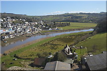 SX4368 : River Tamar at Calstock by N Chadwick