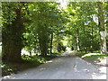 TL9581 : Knettishall Road junction by Adrian Cable