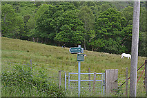 NN1161 : Signpost to Camus na h-Eirighe by Nigel Brown