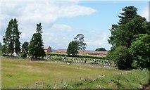 NY6920 : Appleby Cemetery by Christine Johnstone