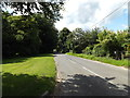 TL8984 : Brettenham Road, Kilverstone, Thetford by Adrian Cable