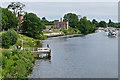 TQ1568 : River Thames, Hampton Court by Alan Hunt