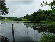 NS5379 : Carbeth Loch by John Allan