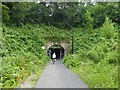 ST7463 : Western entrance to Devonshire Tunnel on Two Tunnels Greenway by David Smith
