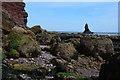 SX9574 : Holcombe : Rocky Coastline by Lewis Clarke