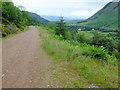 NN1271 : Forest track in Glen Nevis by John Allan