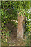 SU1007 : WWII airfield bombing decoy control bunker - Moors Valley Golf Course (3) by Mike Searle