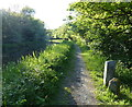NT0875 : Union Canal towpath north of Winchburgh by Mat Fascione