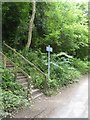 """ST7762 : Steps which are marked """"Unsuitable for Cycles"""", Monkton Combe by David Smith"""