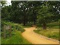 TQ1970 : Paths in Richmond Park by Malc McDonald