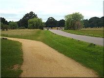 TQ2173 : Path in Richmond Park by Malc McDonald