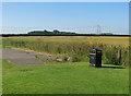 TA0055 : Isolated bin, near Driffield by Paul Harrop