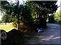 SZ1195 : Strouden: playing field alongside Yeomans Road by Chris Downer