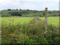 SK2256 : Footpath to Longcliffe by Ian Calderwood