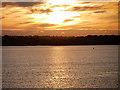 SU5202 : Solent Sunrise by David Dixon