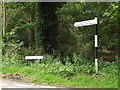 TM0080 : Hall Lane sign & Roadsign on Hall Lane by Adrian Cable