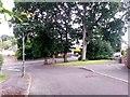 SZ0596 : West Howe: Deepdene Lane arrives on Knighton Heath Road by Chris Downer