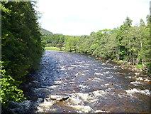 NO2694 : River Dee [1] by Michael Dibb