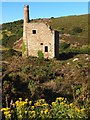 SW7046 : Engine House, Wheal Ellen by Chris Andrews