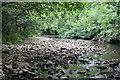 ST1898 : River Sirhowy below Pont Syr Dafydd by M J Roscoe