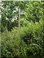TL1913 : Footpath sign off Coleman Green Lane by Adrian Cable