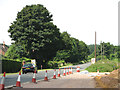 TG1415 : Traffic cones beside the Fakenham Road (A1067) by Evelyn Simak