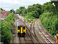 SJ4911 : Sutton Bridge Junction by John Lucas