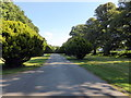 ST5072 : Main Entrance to Tyntesfield by PAUL FARMER