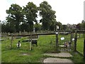 SE2037 : Goats in St Wilfrid's churchyard by Stephen Craven