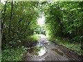 SJ8143 : Lymes Road by Jonathan Hutchins
