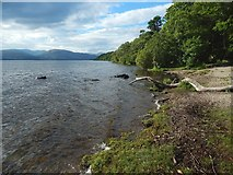 NS3883 : The shore at Balloch Park by Lairich Rig