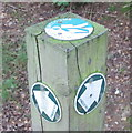 SU9486 : Signs at junction of permissive paths by David Hawgood