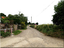 TM0080 : Harbour Lane Byway to the A1066 Diss Road by Adrian Cable