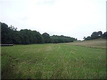 SK3355 : Field beside Leashaw Wood by JThomas