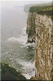 TA1974 : Bempton Cliffs by Richard Sutcliffe