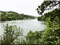 SX8754 : The River Dart from the site of the Gun battery on Agatha Christie's Greenway Estate by Derek Voller
