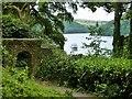 SX8754 : MV Dartmouth Castle rounds a bend in the River Dart, Devon by Derek Voller