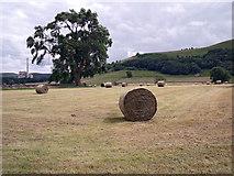 SK1583 : Recently cut field by Stephen Burton