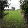 SN1201 : Grassy path into Tenby Cemetery by Jaggery