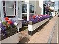 SX9372 : Floral display at a house in The Strand, Shaldon, Devon by Derek Voller