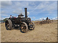 SO8040 : Welland Steam Rally - speed the plough by Chris Allen