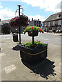 TF2310 : Floral Display on North Street by Adrian Cable
