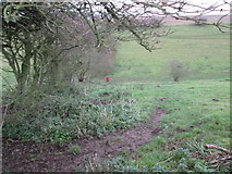 SE9436 : The  climb  up  out  of  Swin  Dale by Martin Dawes