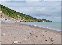 SX9253 : Man Sands Beach and Southdown Cliff, near Brixham by Derek Voller