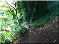 SE2536 : Outfall structure near Kirkstall Forge by Stephen Craven