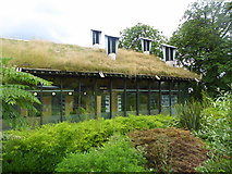 TQ3473 : The CUE building, Horniman Museum, Forest Hill by pam fray